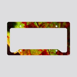 FallGrapeLeaf11x18 License Plate Holder