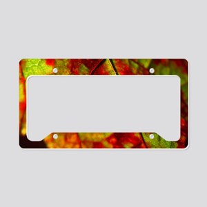 FallVineLeaf14x6 License Plate Holder
