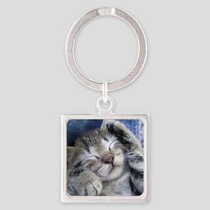 Sleeping Kitten Square Keychain