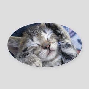 Sleeping Kitten Oval Car Magnet