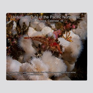 Underwater Life of the Pacific North Throw Blanket