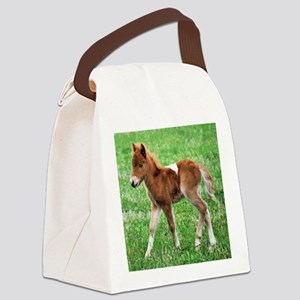 Alert in the Field Canvas Lunch Bag