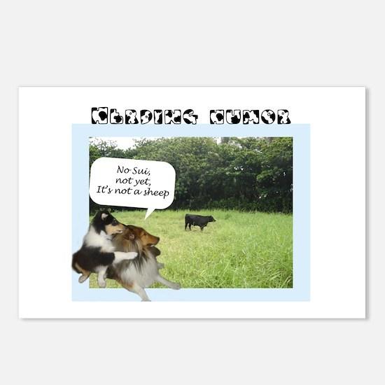 Herding Humor Postcards (Package of 8)