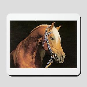 Arabian Barb Portrait Horse Lover Mousepad