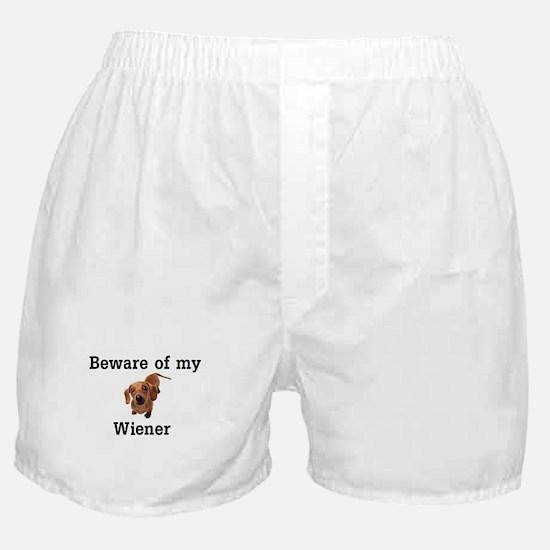 beware.png Boxer Shorts