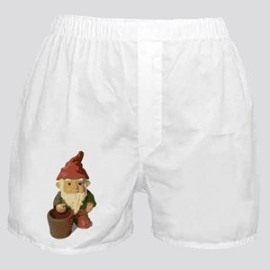 Retro Lawn Gnome Boxer Shorts
