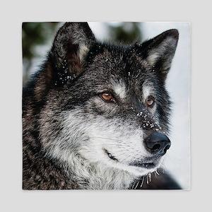 Beautiful Grey Wolf Queen Duvet