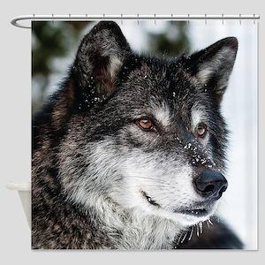 Beautiful Grey Wolf Shower Curtain