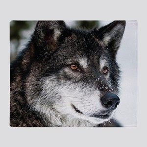Beautiful Grey Wolf Throw Blanket