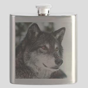 Beautiful Grey Wolf Flask