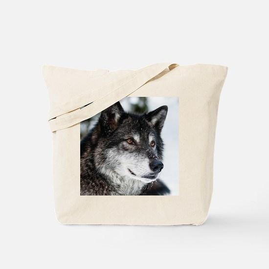 Beautiful Grey Wolf Tote Bag