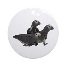 African Gray Parrot Babies Ornament (Round)