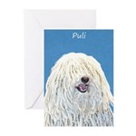 Puli Greeting Cards (Pk of 20)