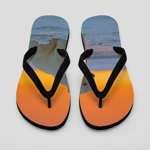 Polar Bear Flip Flops
