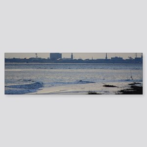 CHARLESTON HARBOR Sticker (Bumper)