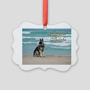 00cover-miracles-blackhawk Picture Ornament