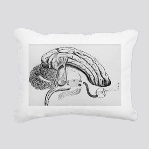 Illustration of pineal g Rectangular Canvas Pillow