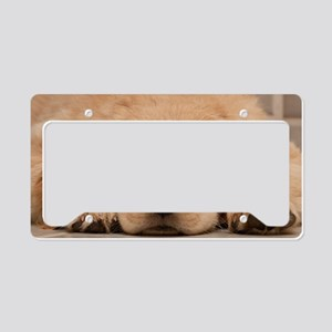 Golden Retriever Puppy License Plate Holder