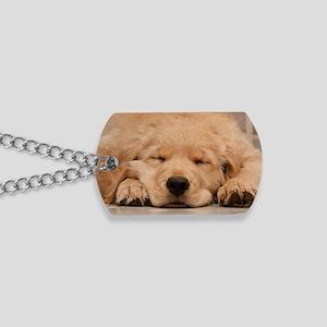 Golden Retriever Puppy Dog Tags