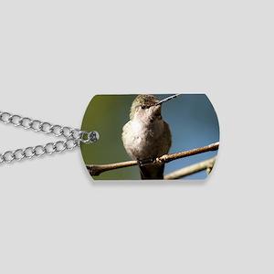 Annas Hummingbird Dog Tags