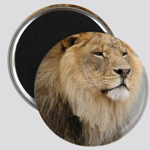 Lion Lovers Magnet