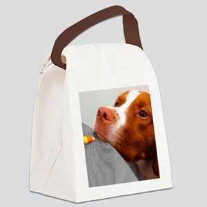 Candy corn dog Canvas Lunch Bag
