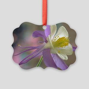 Purple and White Columbine Picture Ornament