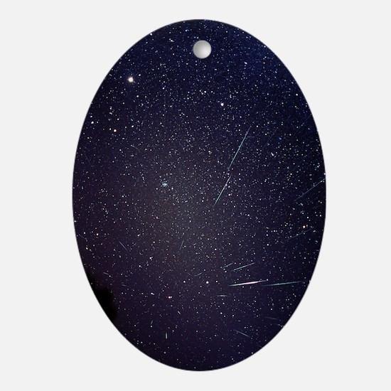 Leonid meteors Oval Ornament