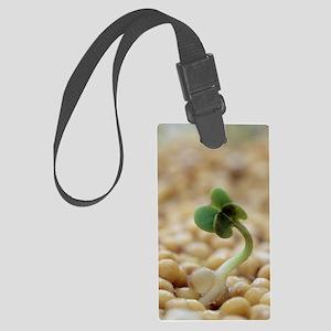 Indian mustard seedling (Brassic Large Luggage Tag
