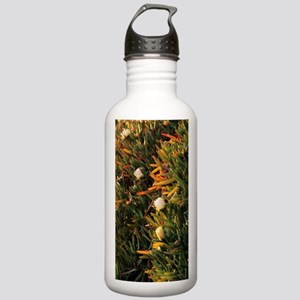 Hottentot fig (Carpobr Stainless Water Bottle 1.0L