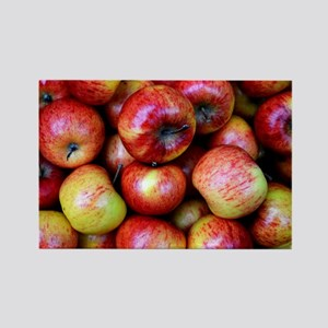 Red Apples Rectangle Magnet