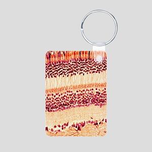 Retina, light micrograph Aluminum Photo Keychain