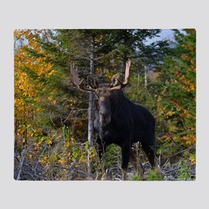 Moose in ditch 2 11x17 poster Throw Blanket