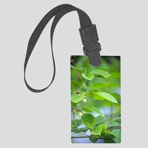 Chinese schisandra (Schisandra c Large Luggage Tag
