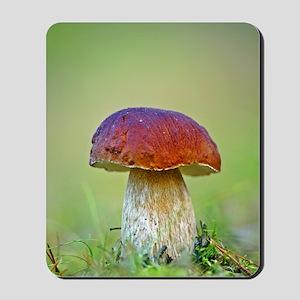 Cep mushroom (Boletus edulis) Mousepad