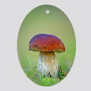 Cep mushroom (Boletus edulis) Oval Ornament