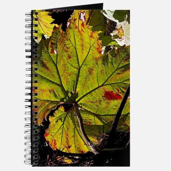 Giant rhubarb leaf Journal