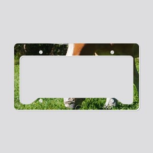 Fred the horse License Plate Holder