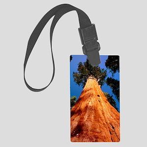 Giant Sequoia 'General Sherman' Large Luggage Tag