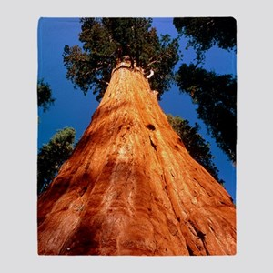 Giant Sequoia 'General Sherman' Throw Blanket