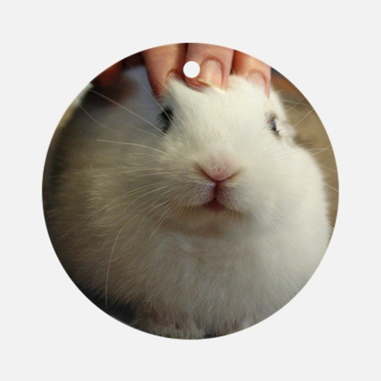 January - Bunny Bliss Round Ornament