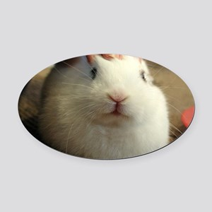 January - Bunny Bliss Oval Car Magnet