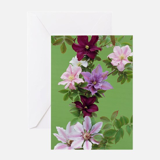 Mixed clematis flowers Greeting Card