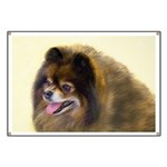 Pomeranian (Black and Tan) Banner