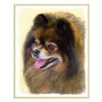 Pomeranian (Black and Tan) Small Poster