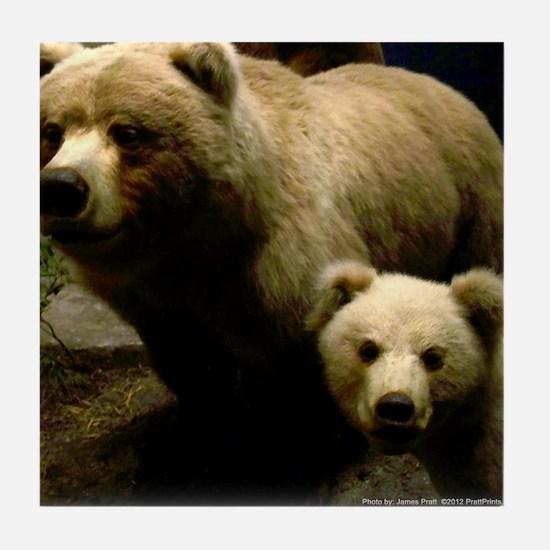 Momma Bear and Cub Tile Coaster