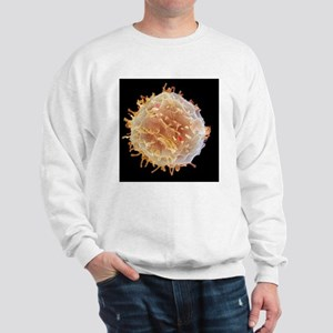 Stem cell, SEM Sweatshirt