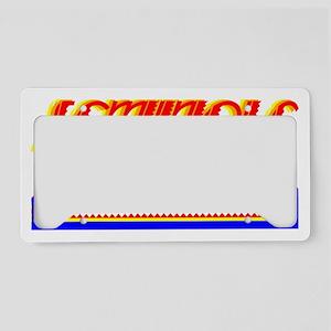 SEMINOLE TRIBE License Plate Holder