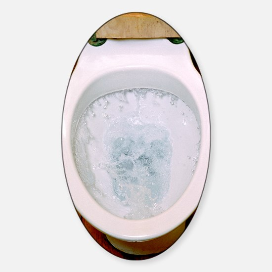 Toilet being flushed Sticker (Oval)