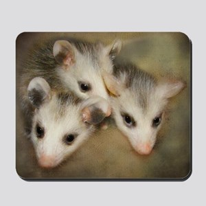 Possum BSnuttles Mousepad